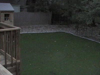 Backyard_11: