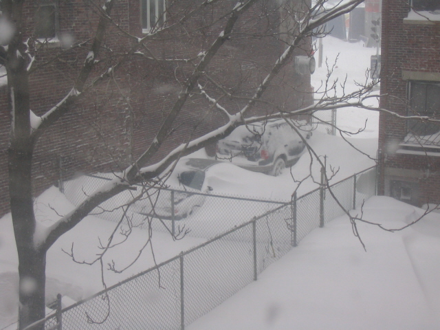 snow view from living room.jpg: