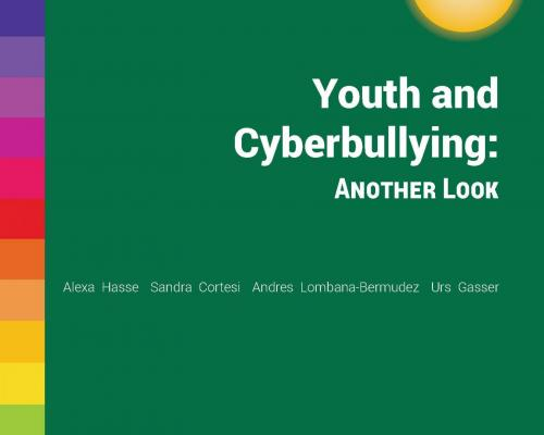 Youth and Cyberbullying