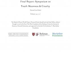 Final Report: Symposium on Youth Meanness & Cruelty