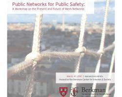 Briefing Document: Public Networks for Public Safety