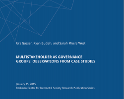 Multistakeholder as Governance Groups: Observations from Case Studies