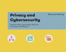 Privacy and Cybersecurity Research Briefing