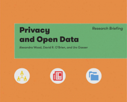 Privacy and Open Data Research Briefing