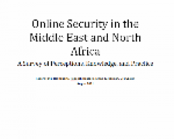 Online Security in the Middle East and North Africa