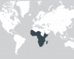 The OpenNet Initiative reports on Internet filtering in Sub-Saharan Africa